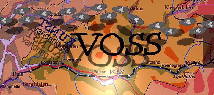 Kunstvandring på Voss